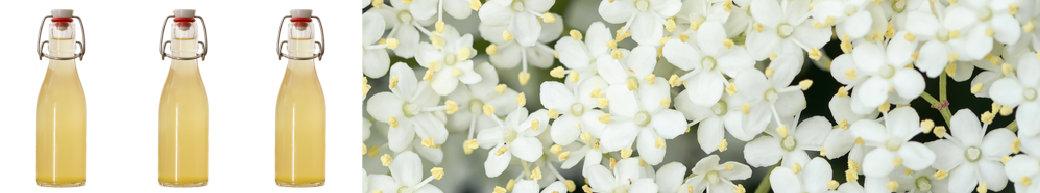 Elderflower Cordial